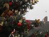 Weihnachtsmarktlauf Landstuhl 2015